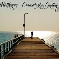 Chance To Say Goodbye — Pete Murray