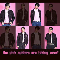 Are Taking Over!!! — The Pink Spiders