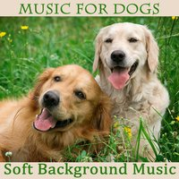 Music for Dogs: Soft Background Music — The O'Neill Brothers Group