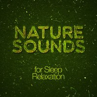 Nature Sounds for Sleep Relaxation — Natural Sounds, Nature Sound Collection