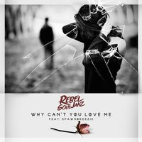 Why Can't You Love Me — Rebel Souljahz, Spawnbreezie