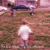 Take the Tiger Home — Drumming Bird