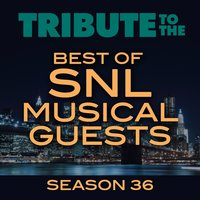 Tribute to the Best of SNL Musical Guests Season 36 — Deja Vu
