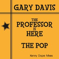 The Professor Is Here/The Pop — Gary Davis