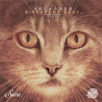 Different Beat EP — Volkoder