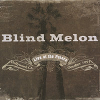 Live At The Palace — Blind Melon