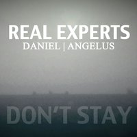Don't Stay — Real Experts