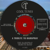 A Tribute to Hairspray — The Hairspray Tribute Band