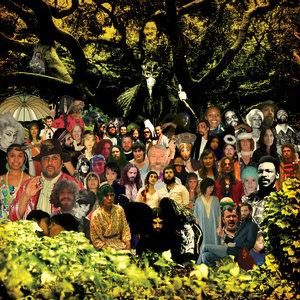 Devendra Banhart - The Beatles