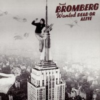 Wanted Dead Or Alive — David Bromberg