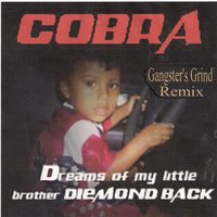 Dreams Of My Little Brother Diemondback — Cobra