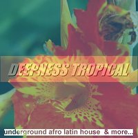 Deepness Tropical: Underground Afro Latin House & More — сборник