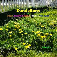 Dandelions and Other Assorted Aural Oddities, Vol. XXIX — Colie Brice