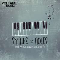Synths and Notes 24 — сборник