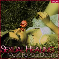Sexual Healing - Music for Your Dreams, Vol. 1 — сборник