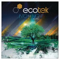 Into The Night — Ecotek
