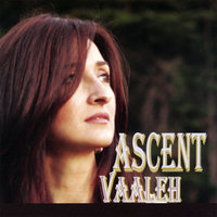 Ascent — Parisa Vaaleh