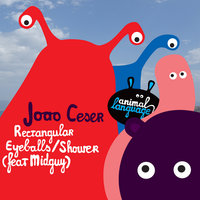Rectangular Eyeballs / Shower (feat. Midguy) — Joao Ceser feat. Midguy, Joao Ceser