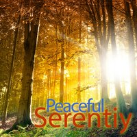 Peaceful Serenity Music - Relaxing New Age Instrumentals — New Age Harp Group