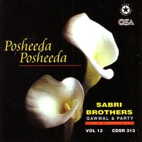 Posheeda Posheeda - Live in Concert UK — The Sabri Brothers