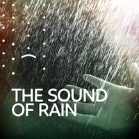 The Sound of Rain — Rain Sounds Nature Collection