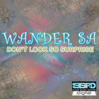Don't Look So Surprised — Wander Sá