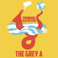 Swimming New Orleans — The Grey A