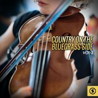 Country on the Bluegrass Side, Vol. 3 — Willie Nelson, Billy Walker, The Delmore Brothers