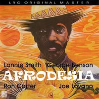 Afrodesia — Lonnie Smith