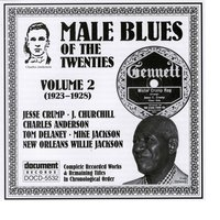 Male Blues Of The Twenties Vol. 2 (1923-1928) — Various Artists - Document Records