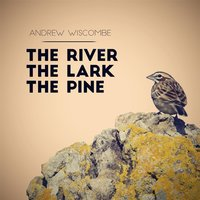 The River, The Lark, The Pine — Andrew Wiscombe