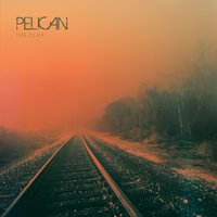 The Cliff — Pelican