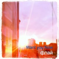 Флай — Want You Now