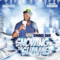 Snowing in the Summer — Shad Gee