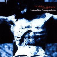 Zauberschloss/Kiss Your Shadow — In Strict Confidence
