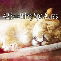 42 Soothing Spa Auras — Spa & Spa