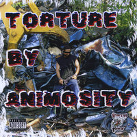 Torture By Animosity — Animosity