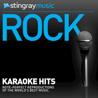 Stingray Music Karaoke - In The Style Of Foo Fighters - Vol. 3 — Stingray Music