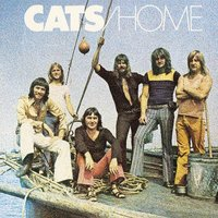 Home — The Cats