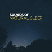 Sounds of Natural Sleep — Sounds of Nature for Deep Sleep and Relaxation