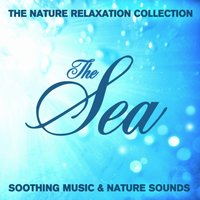 The Nature Relaxation Collection - The Sea / Soothing Music and Nature Sounds — Sugo Music Artists