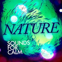 Nature Sounds for Calm — Outside Broadcast Recordings