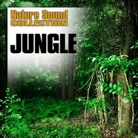 Jungle (Nature Sounds) — Nature Sound Collection
