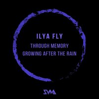 Through Memory / Growing After the Rain — Ilya Fly