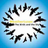 The Birds And The Sky — Weathertunes