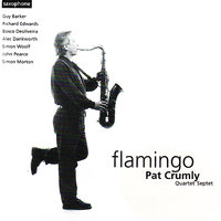 Flamingo — Pat Crumly