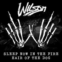 Sleep Now In the Fire / Hair of the Dog — Wilson