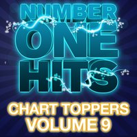 Number One Hits: Chart Toppers Vol. 9 — Deja Vu