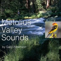 Metolius Valley Sounds — Gary Albertson