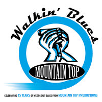 Walkin' Blues - 15 Years from Mountain Top Productions — сборник